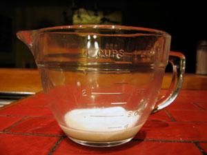 yogurt-starter