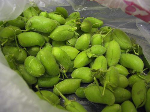 Fresh chickpeas, by amolson1 on flickr.com