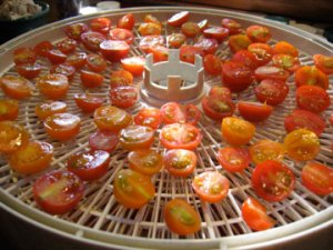 dehydrating-tomatoes