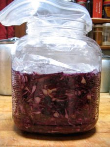 pink-sauerkraut-in-process
